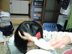 Sdsc00489_2