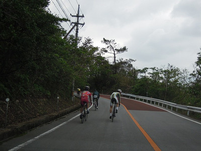 Okinawasisou