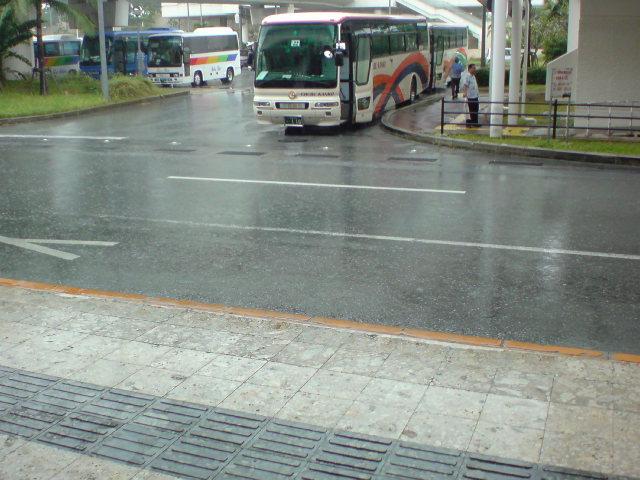 土砂降りですね〜。